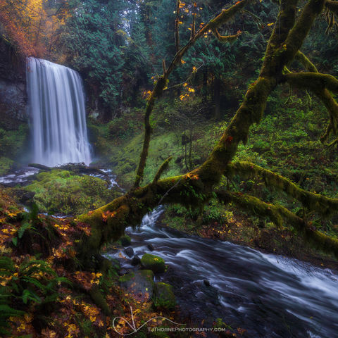 oregon, waterfall, autumn, color, columbia river gorge