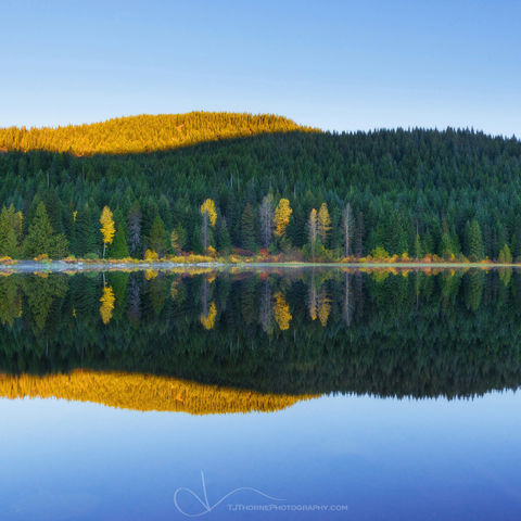 sunrise, reflection, trillium lake, water, oregon, autumn, color