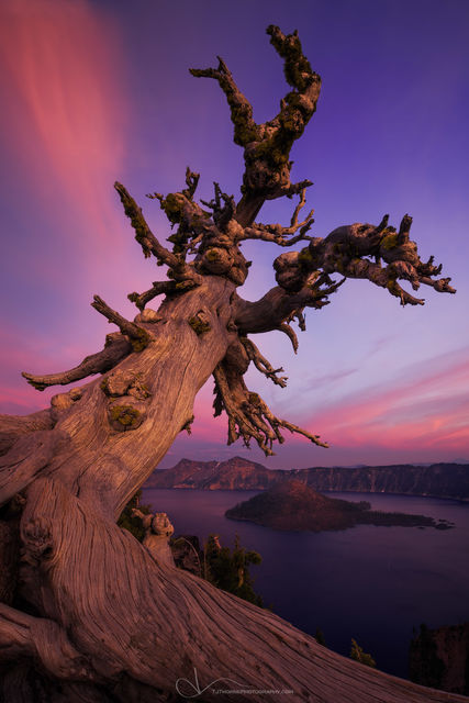 crater lake, oregon, artist-in-residency
