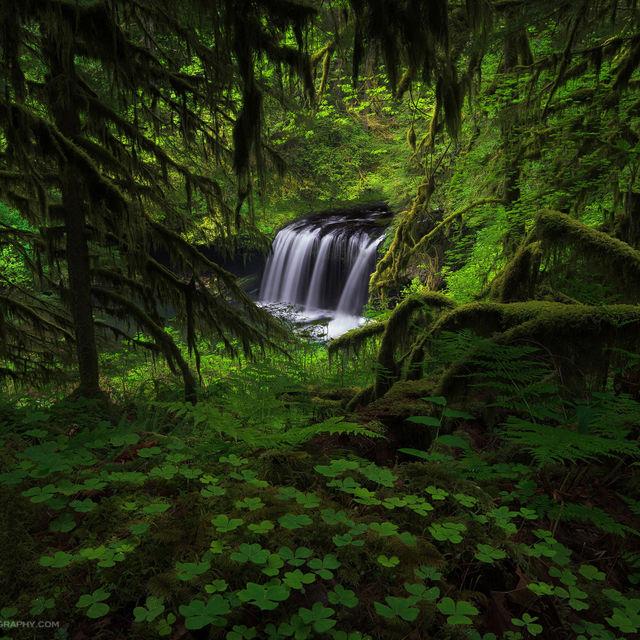 Waterfalls, Streams, and Lakes