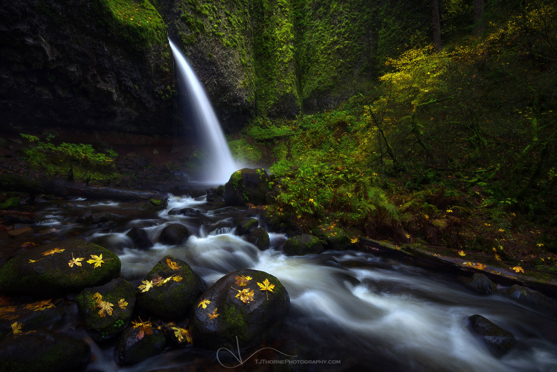 oregon, ponytail falls, columbia river gorge, autumn, waterfall, photo