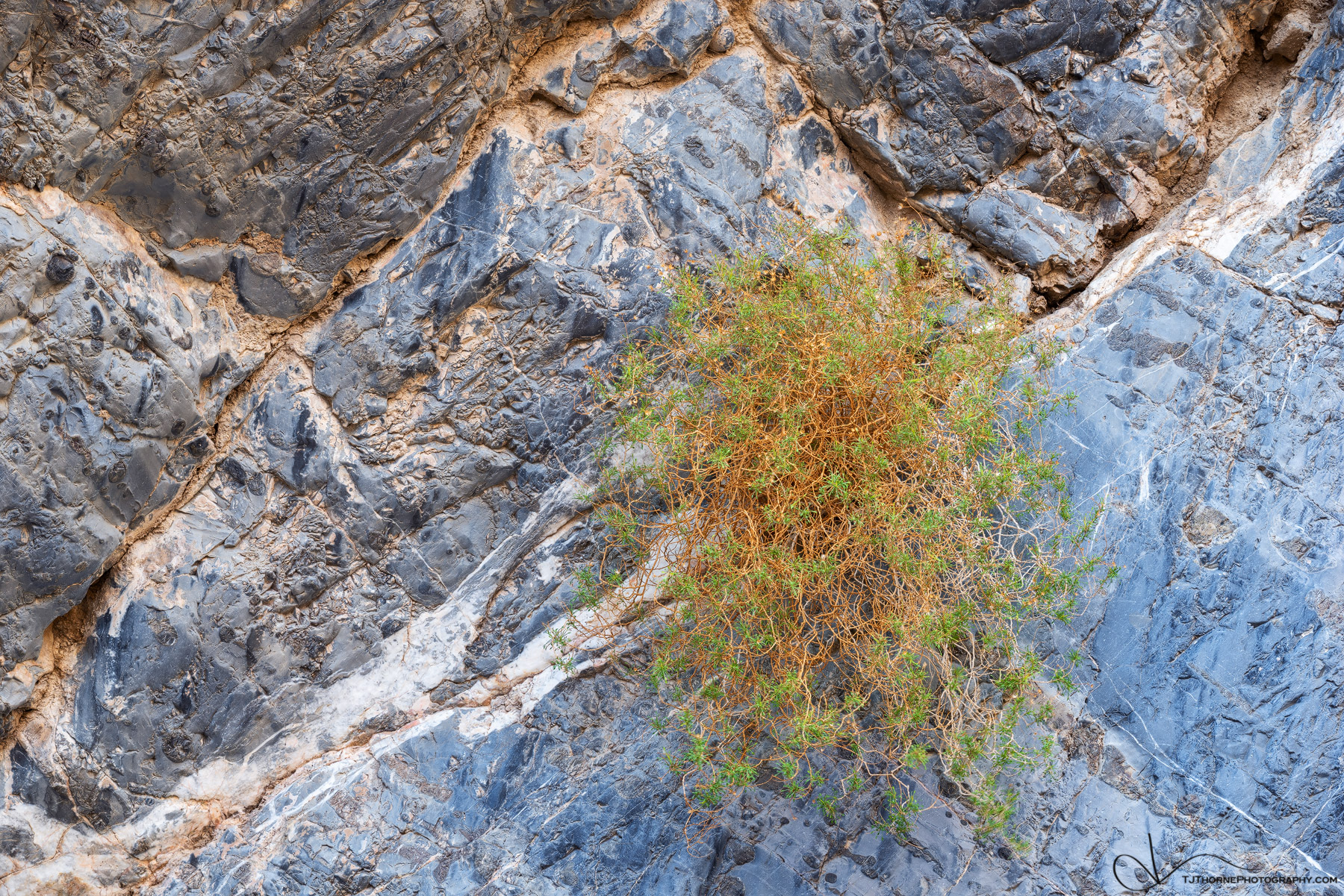 arrowleaf, canyon, death valley, national park, california, photo