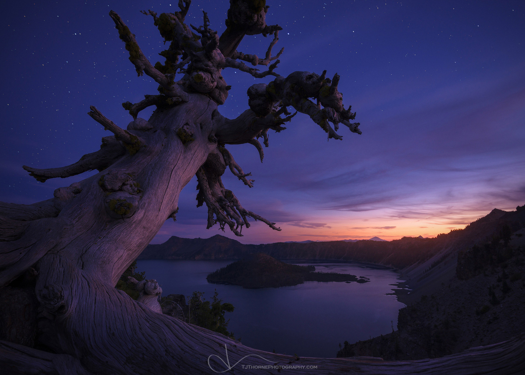 FINE ARTUNLIMITED OPEN EDITION A whitebark pine overlooks Crater Lake under a starry twilight sky. This is the second image...