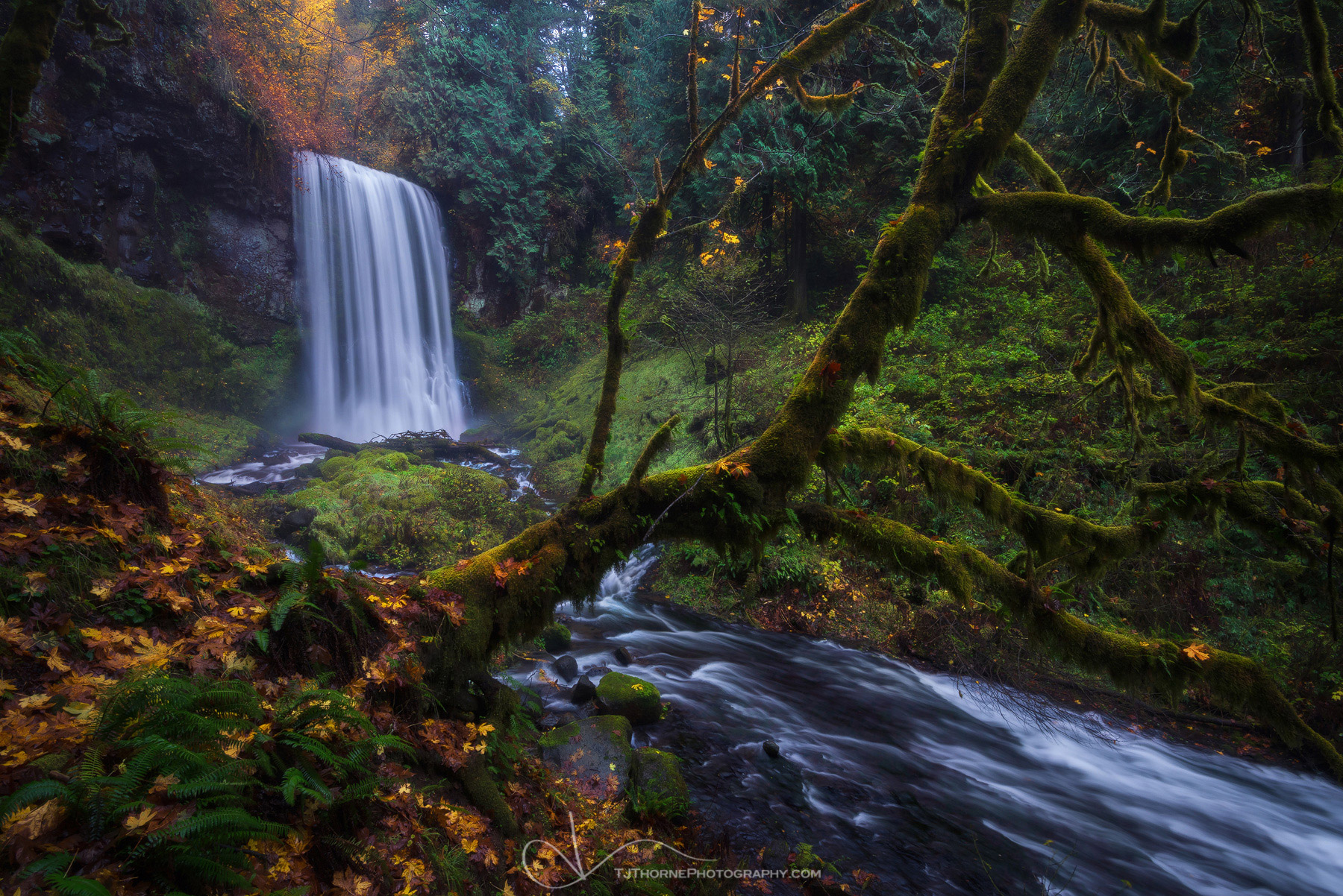 oregon, waterfall, autumn, color, columbia river gorge, photo