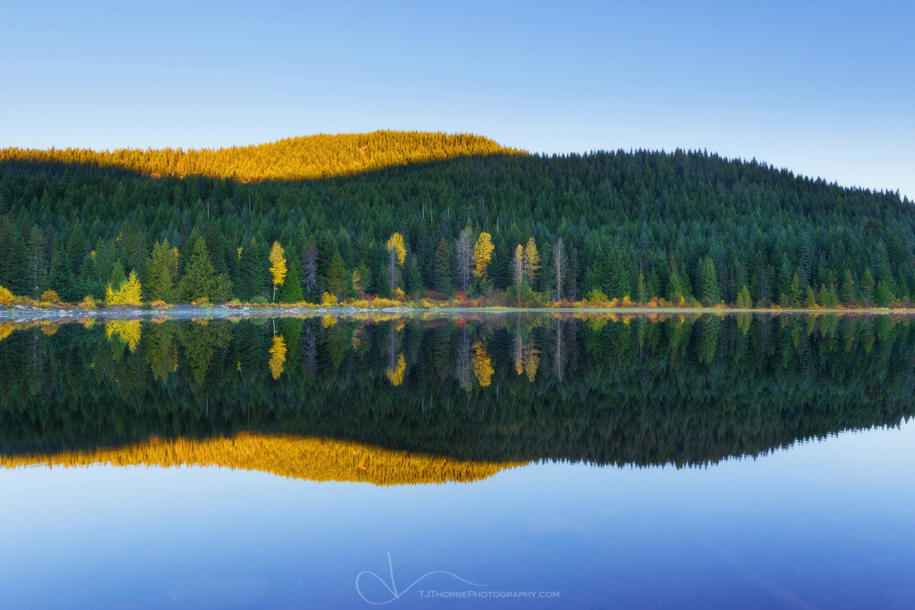 FINE ART LIMITED EDITION OF 100 Sunrise light and autumn colors reflected in the waters Trillium Lake, Oregon.